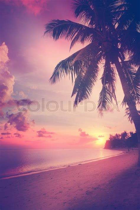 Beautiful tropical beach with