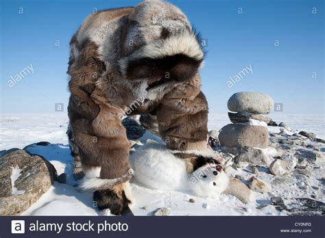 Inuits are hunting on the northpole Stock Photo - Alamy